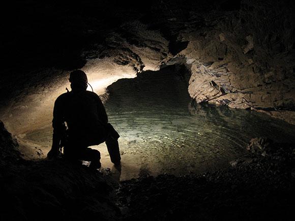 La vita nelle acque sotterranee