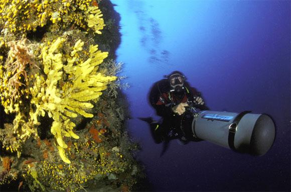 Dive System SUS