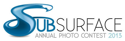 Subsurface 2013