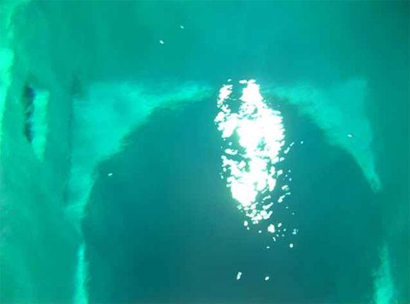 Tunnel piscina Nemo 33