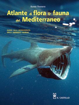 Atlante flora e fauna del Mediterraneo articolo su