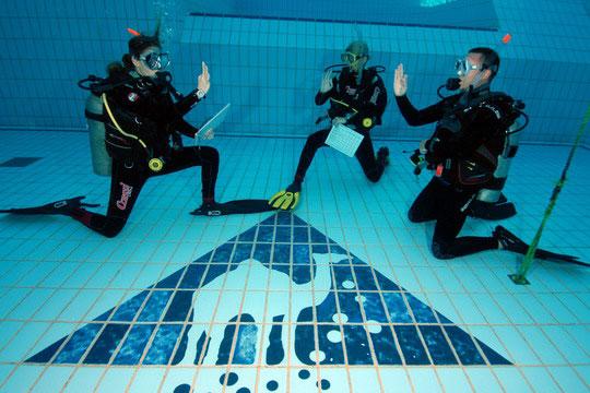 Piscina del Camel Dive Club