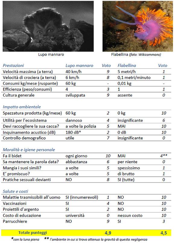 flabellina vs lupo mannaro