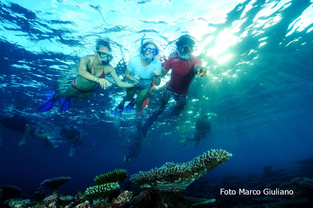Snorkeling-Macana (3)