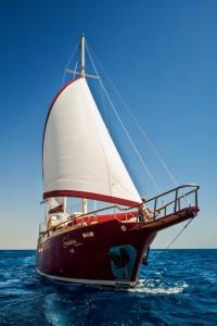 Galatea-5 rid