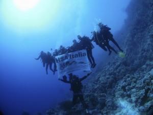 Tuffiamoci alla scoperta dei fondali marini della Gallinara @ Diving Center Idea Blu,, Albenga   Liguria   Italia
