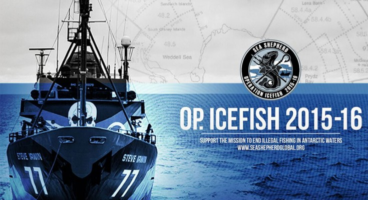 ss-icefish-2016-cover