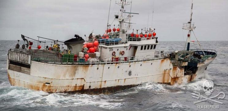 La Kunlun (Taishan), nave bracconiera, sfuggita alle autorità in Thailandia nel mese di settembre.