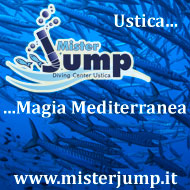 Mr Jump
