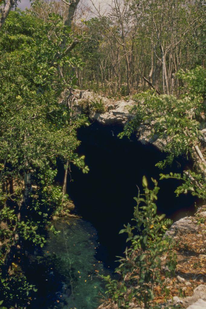 1-ingresso-di-un-cenotes-nella-jungla