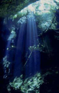-la-luce-attraversa-la-foresta-e-penetra-in-acqua