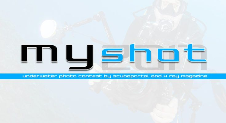 myshot photocontest