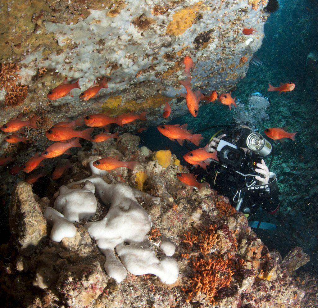 migliori 10 immersioni