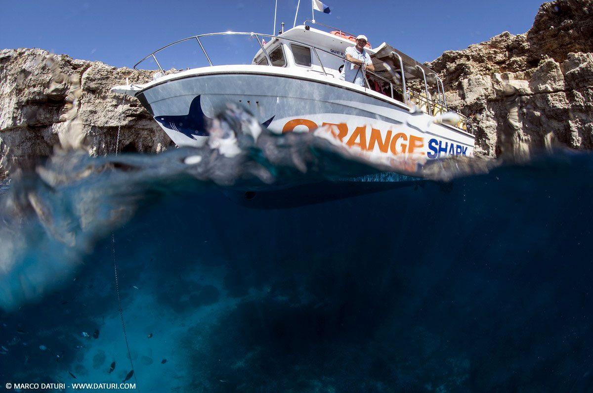 Orange Shark diving center italiano a Malta