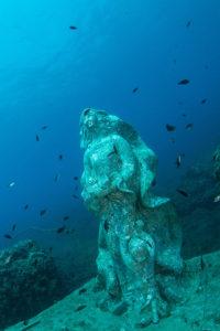 Concorsi di fotografia subacquea