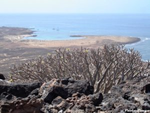 Fuerteventura