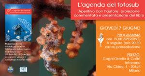 Aperitivo e presentazione del libro Agenda del Fotosub di Massimo Boyer @ Milano - Gogol' Ostello Letterario | Milano | Lombardia | Italia