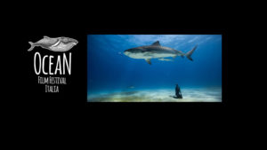 Ocean Film Festival Italia @ Milano Cinema ODEON | Milano | Lombardia | Italia