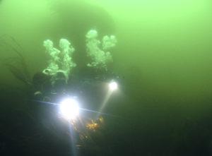 team diving