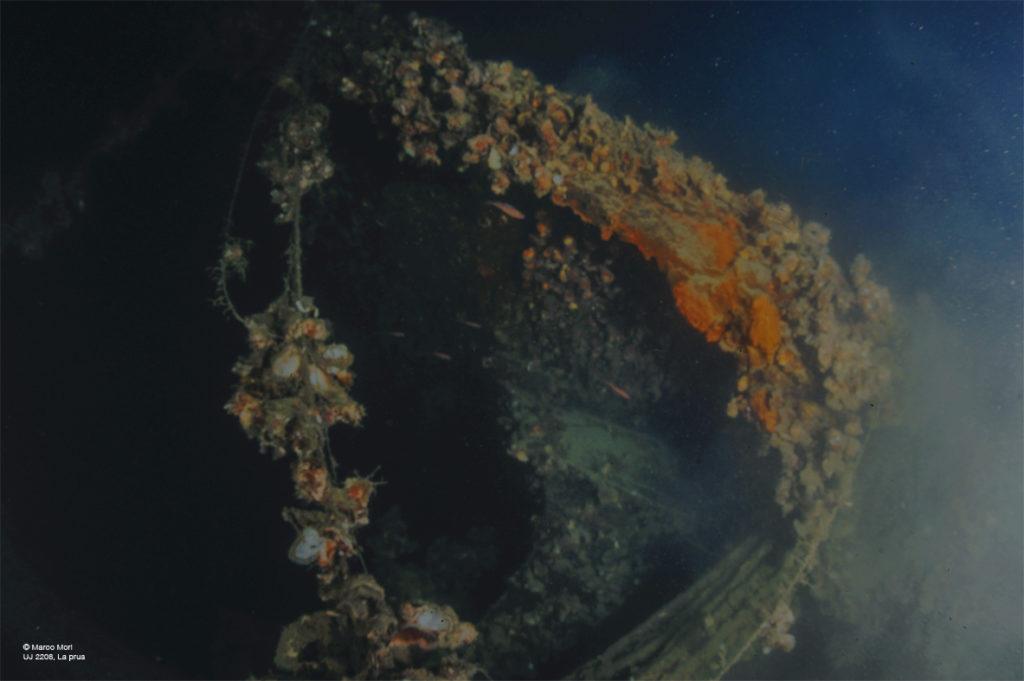 caccia sommergibili UJ2208