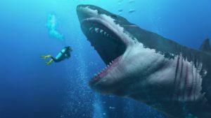 Now you see me? Gli illusionisti del mare
