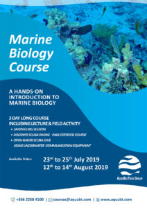 Marine Biology Course @ Malta