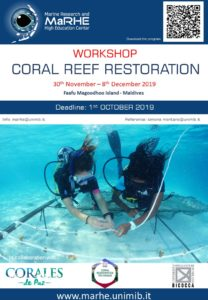 Workshop - coral restoration in Maldives -  third edition @ MaRHE Center
