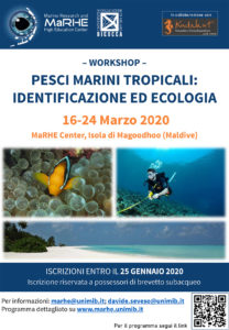 Workshop Pesci Marini Tropicali: Identificazione ed Ecologia @ MARHE center - Maldive