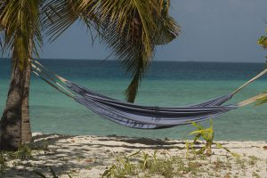 coronavirus e viaggi sub