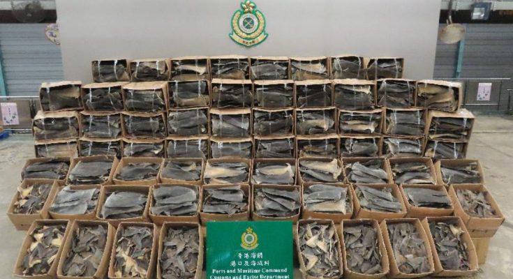 pinne di squalo a Hong Kong