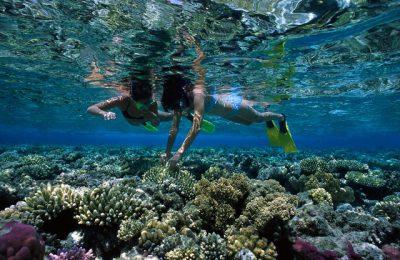 Lo snorkeling per imparare a conoscere il mare