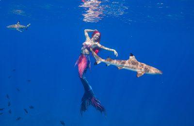 mermaid kat