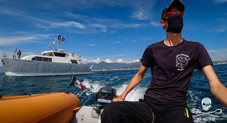 Sea Shepherd in Mediterraneo
