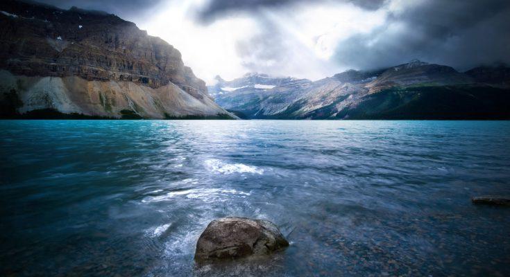 Il mare in pericolo - ecosistemi da salvare