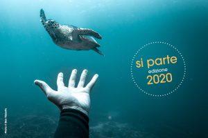 ocean film festival 2020
