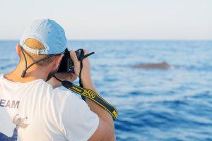 orche speronano barca