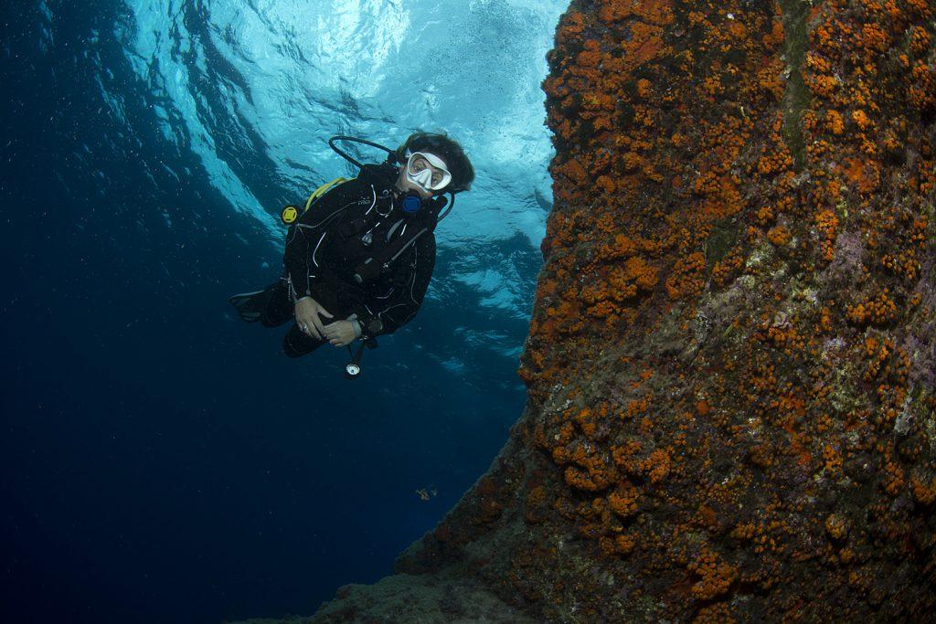 immersioni dopo covid-19