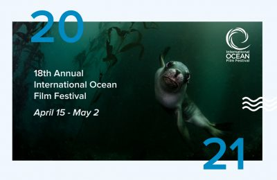 ocean film festival virtuale