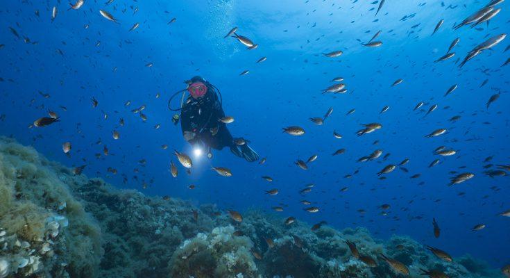 psicologia e attività subacquea