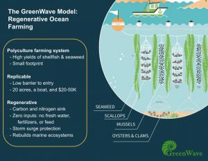nuovo modello di acquacoltura