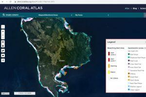 satellite monitora reef