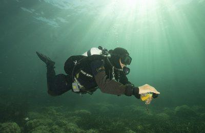 sondaggio sulla subacquea