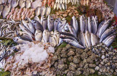 ricetta per salvare il mare