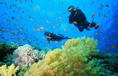 epilessia e subacquea