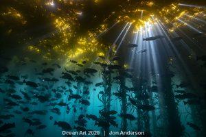 ocean art 2021