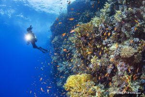 benessere in immersione